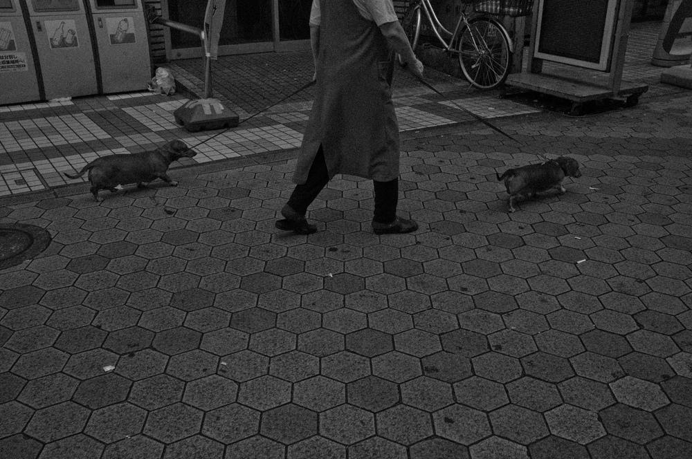 SAMMBLAKE_JAPAN_0263.jpg
