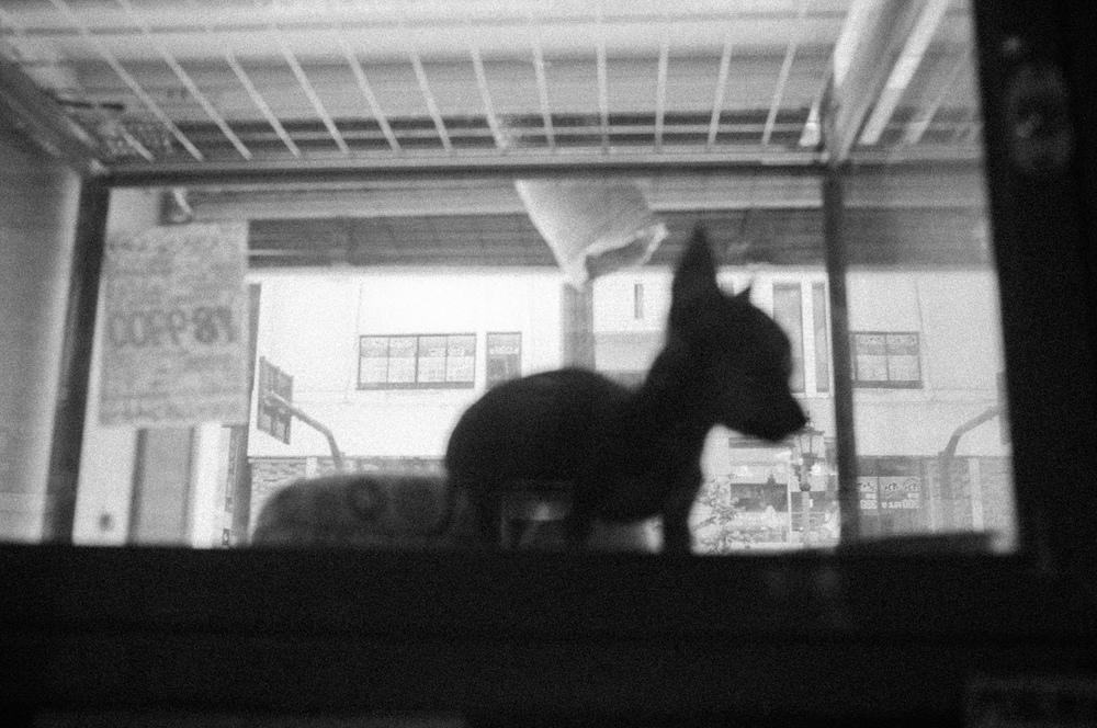 SAMMBLAKE_JAPAN_0286.jpg