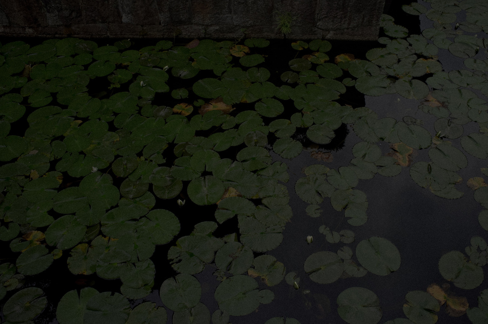 SAMMBLAKE_JAPAN_0470.jpg