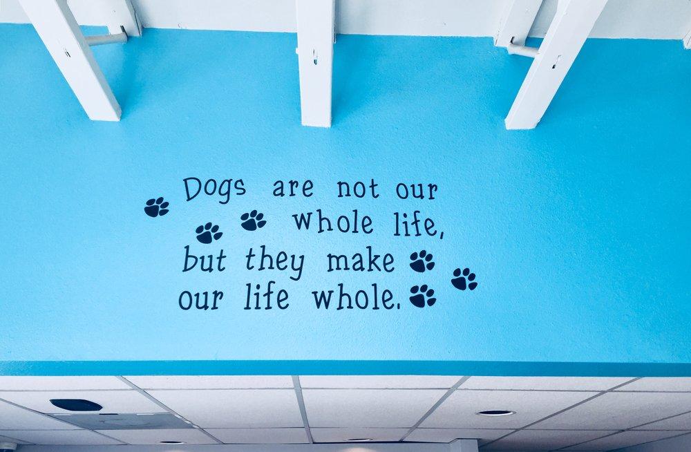 """Pets Change Lives"""