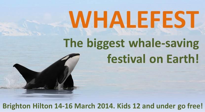 Visit Brighton WhaleFest advert.jpg