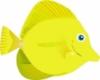 Kealoha website fish 8x.jpg