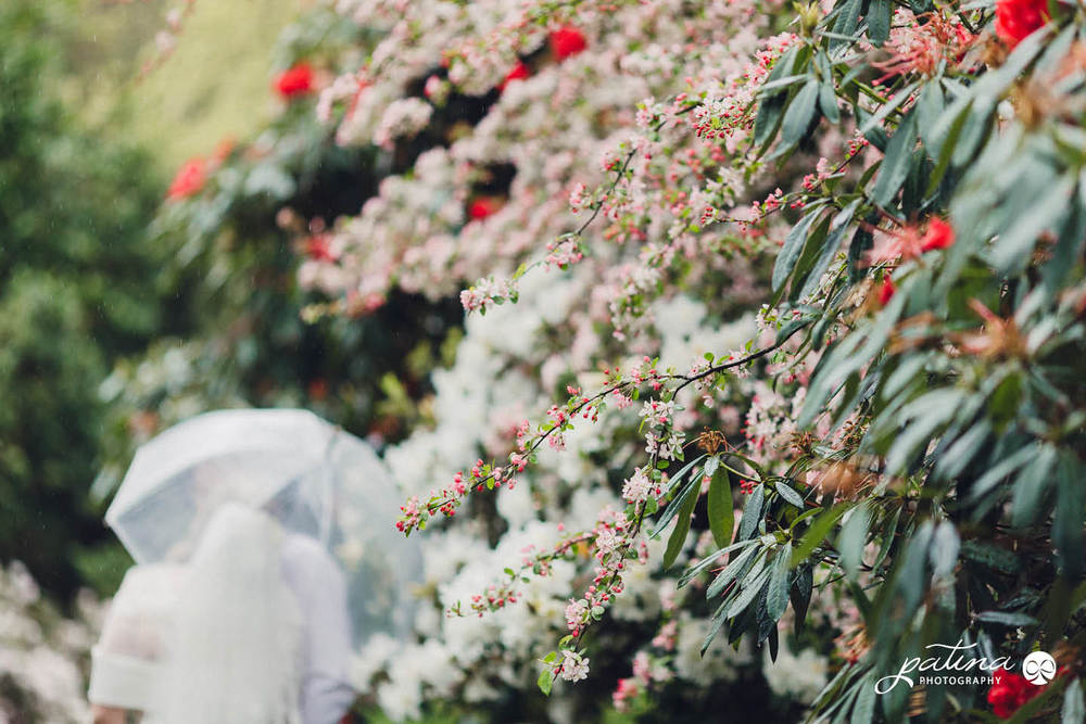 Wellington wedding with spring blossoms
