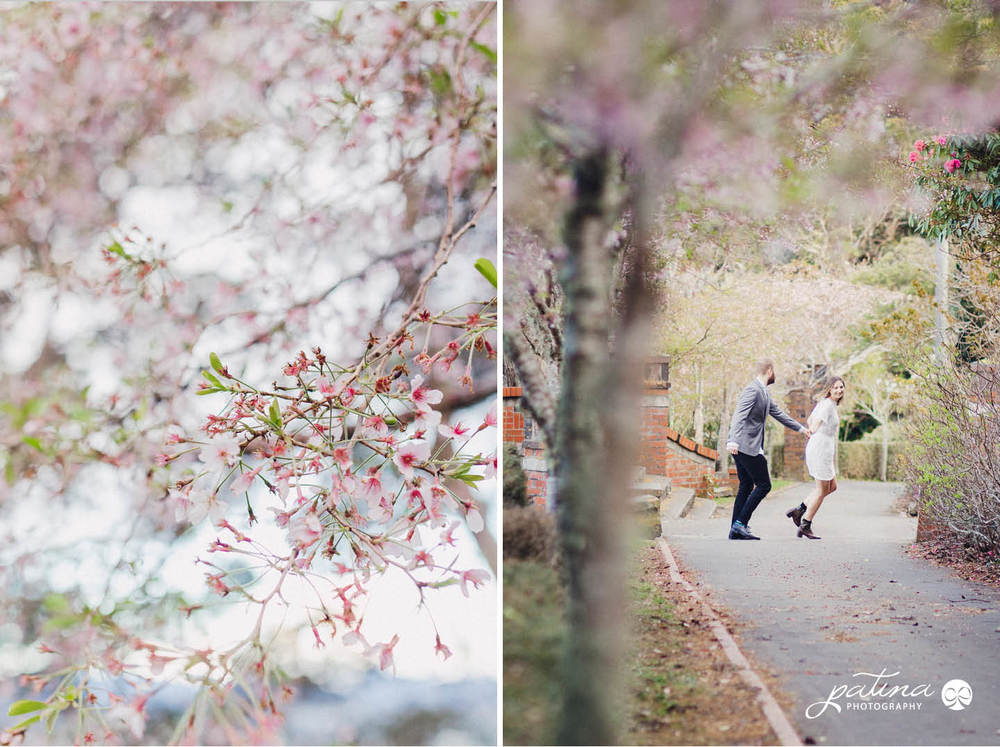spring blossom engagement shoot