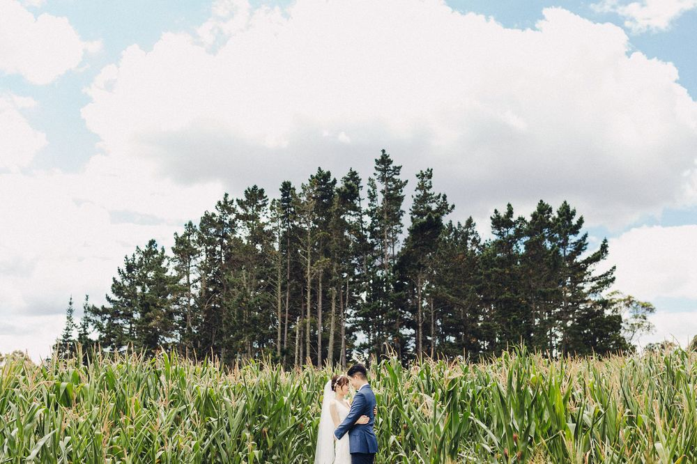Cornfield Wedding Photos Bombay Hills