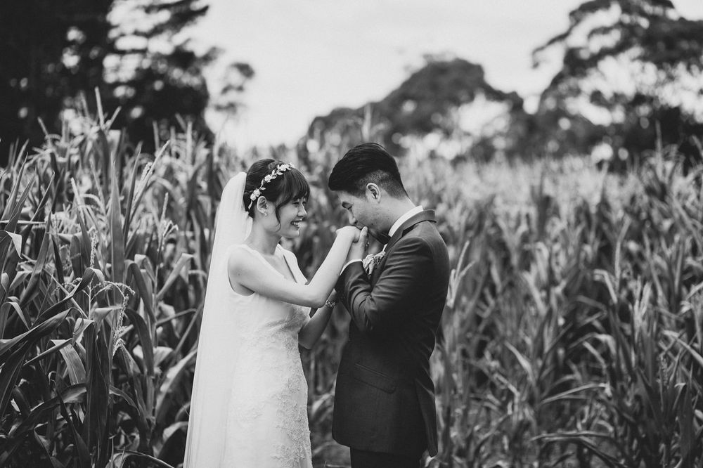 Shy Sweet Bride and Groom Wedding Photo