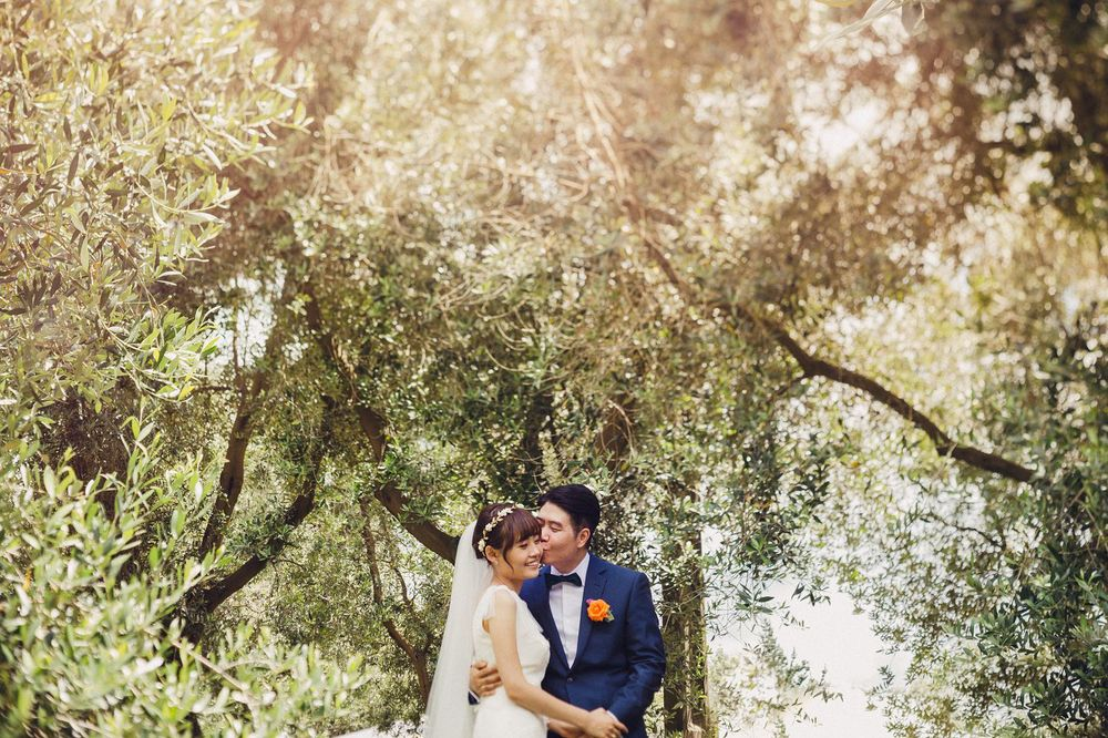 Sunny Auckland Wedding Olive Grove