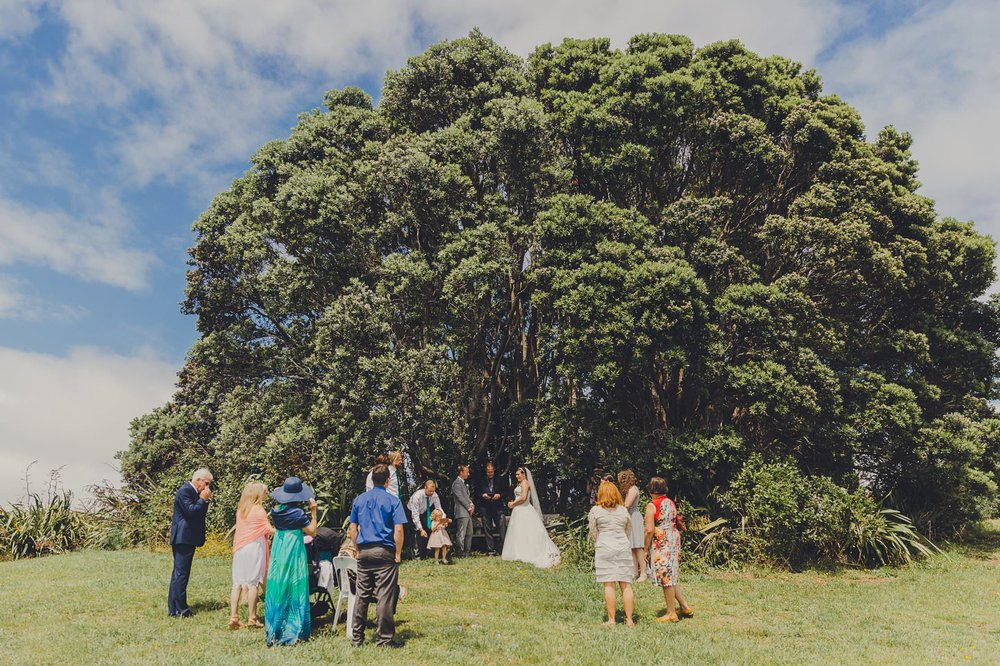 Wedding Ceremony at Shakespeare Cliff Scenic & Historic Reserve