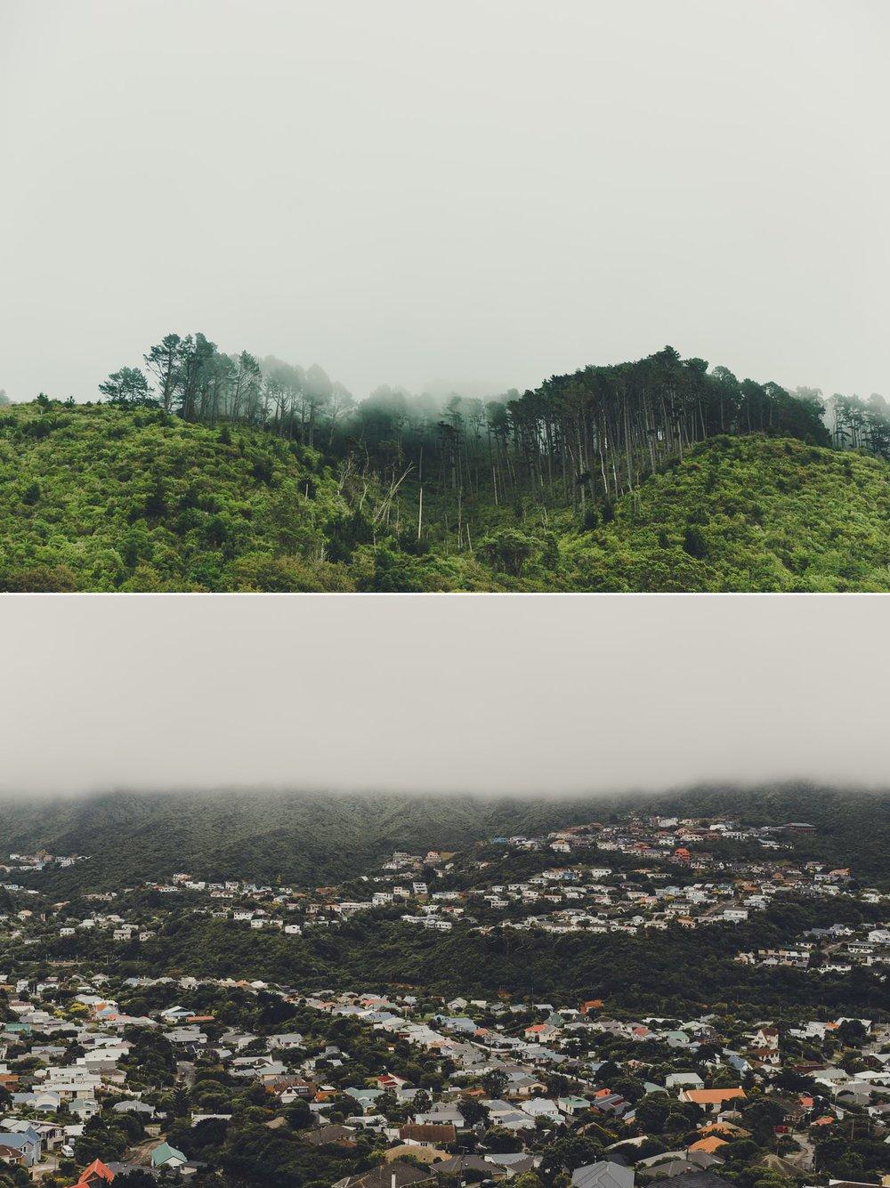 Fog in Wellington hills