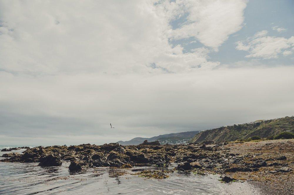 Wellington landscape photography