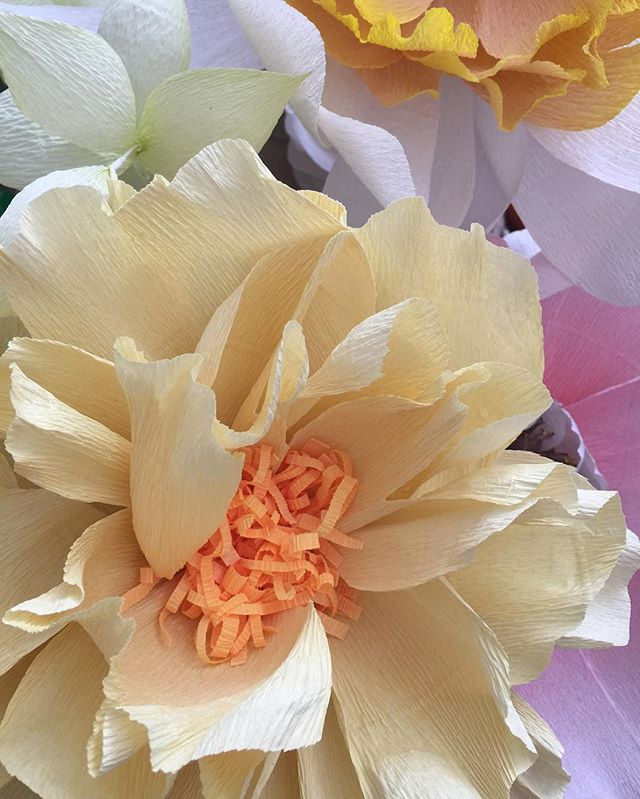 Seriously love~ crepe paper! Think about what you love and this #humpday will be better 😁#bitablooms #oversizepaperflower #crepepaper #paperlove #bloomsintheair
