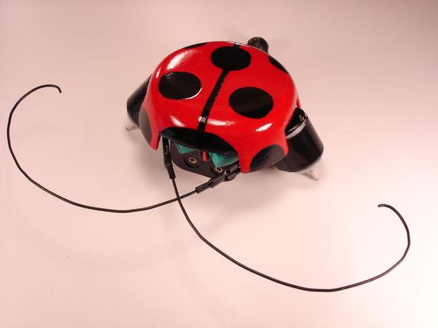 Original DIY Robot image by Robomanic