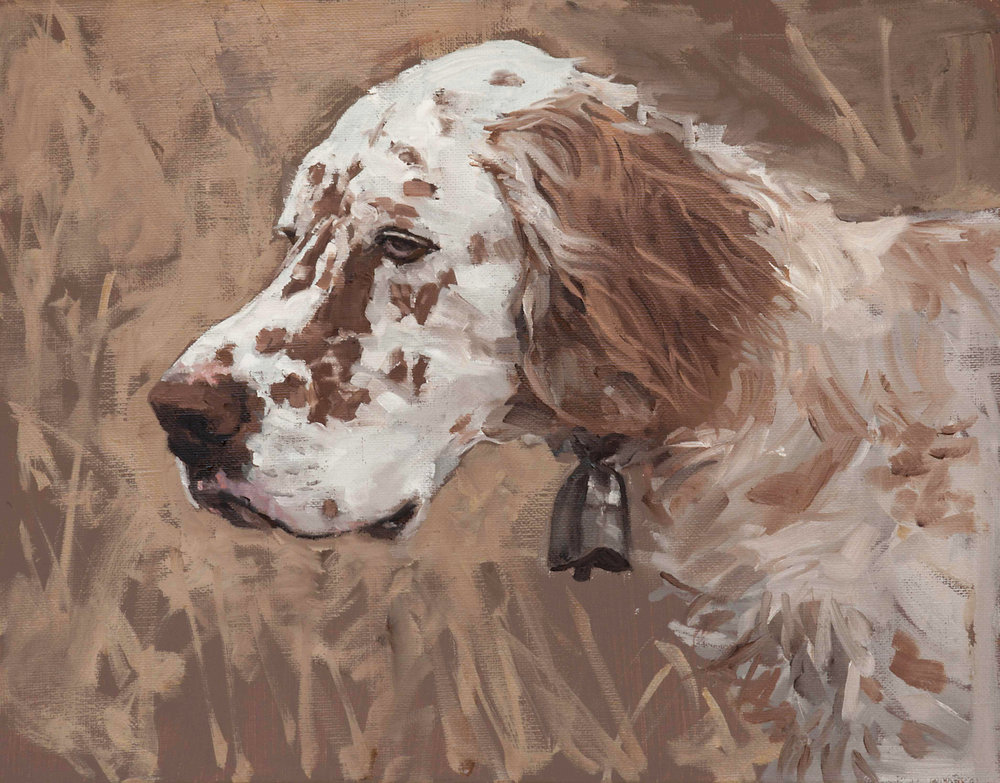 Trout the Dog   11 x 14 oil on linen