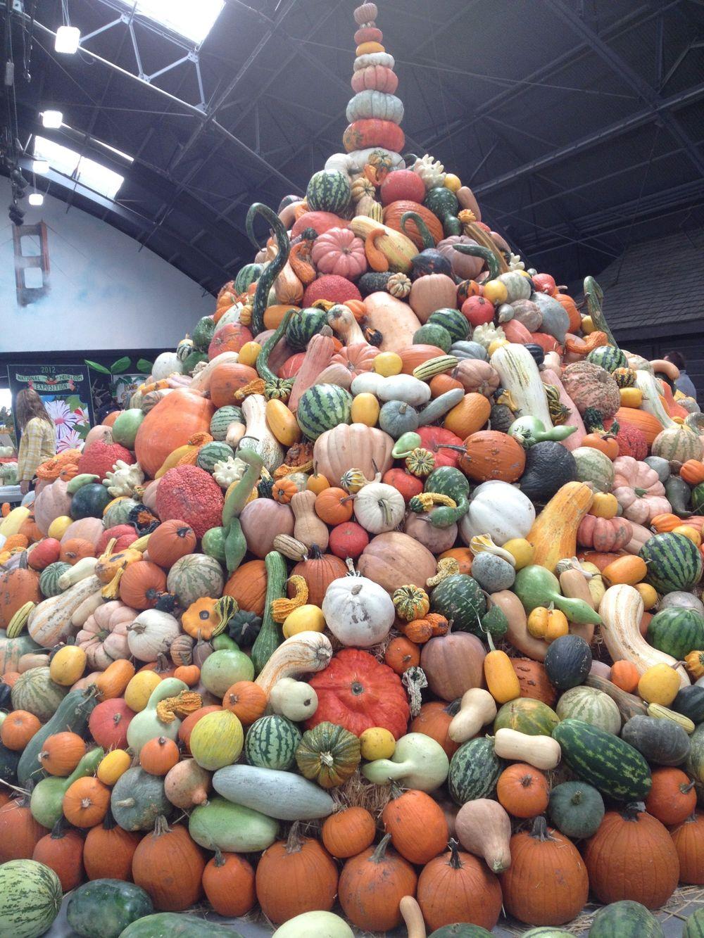 Baker Creek pumpkin, gourd and melon display.