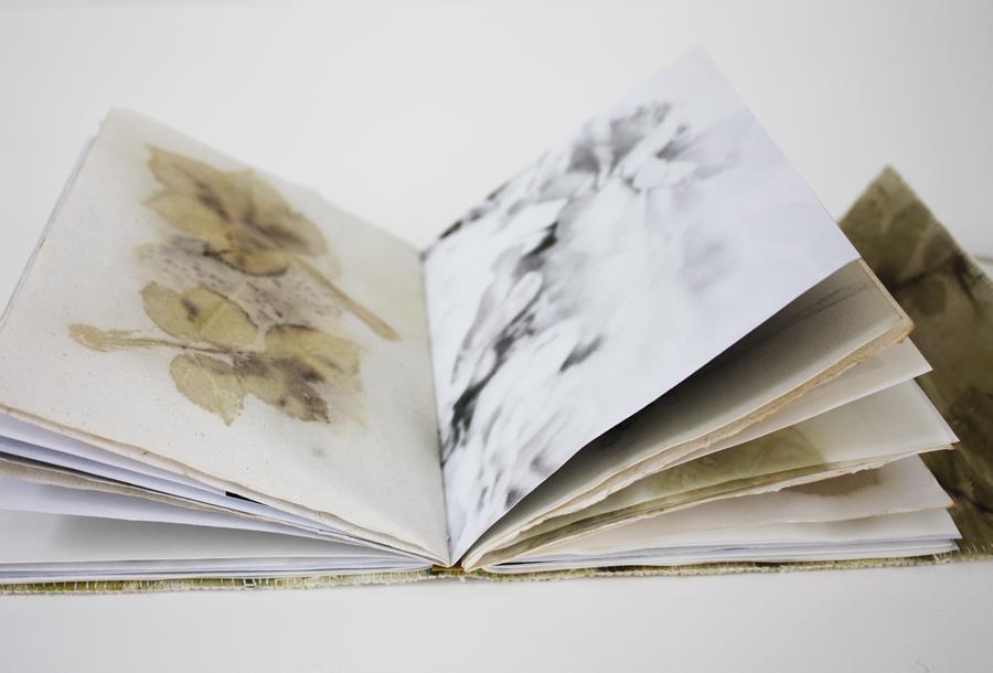book_3_4_B.jpg