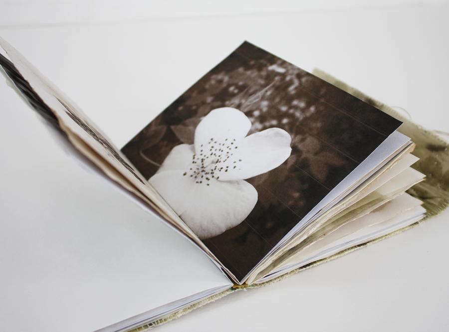book_3_4_R.jpg