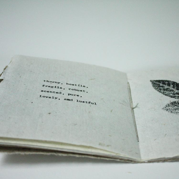 Book_roses_5.jpg