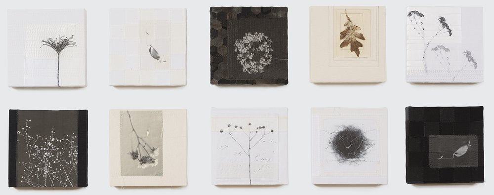 "Remains 1 – 10 , 10"" x 10"", fiber, paper, botanical contact print, digital print, stitching"