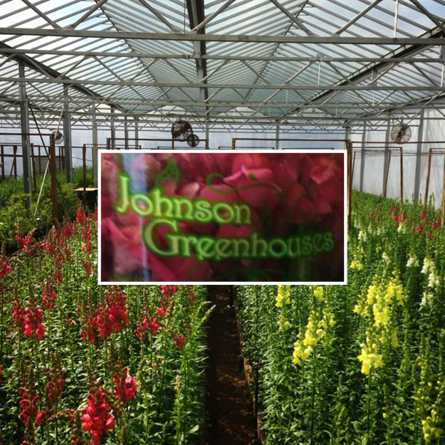Johnson Greenhouses