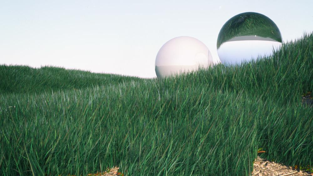 house_grass.jpg