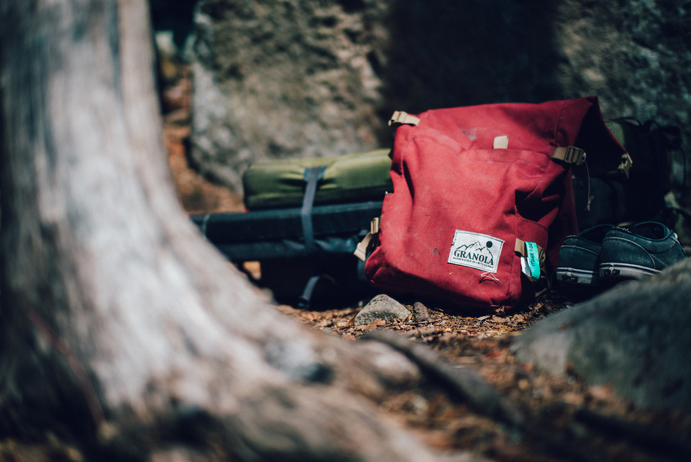 Granola backpack, it's pretty damn awesome.