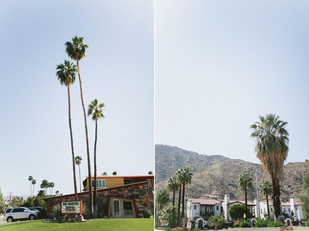 palmsprings12.jpg