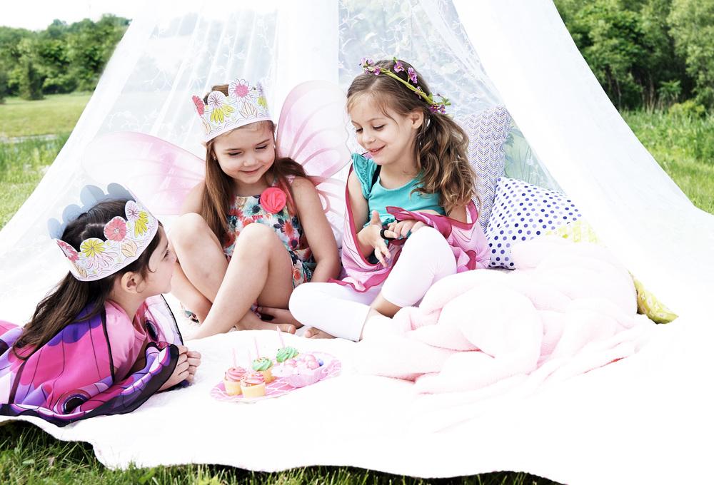 Fairy_Party LS03757.jpg