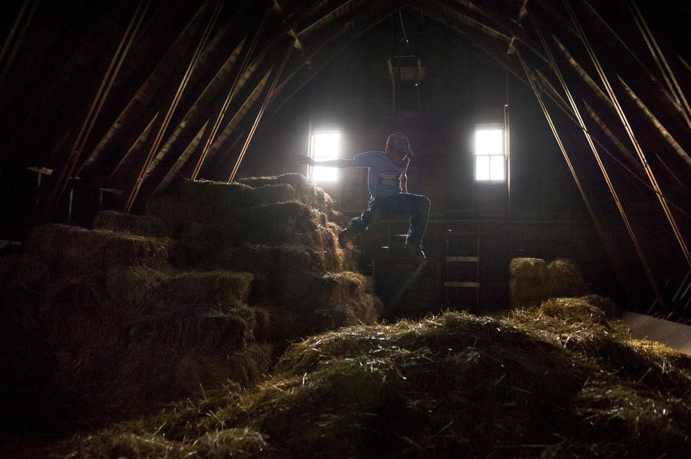 Ben in the hay, near Washburn, ND.