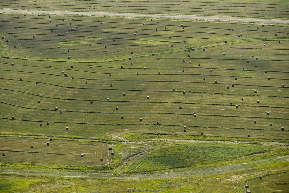 Hay bales in McLean County, ND.