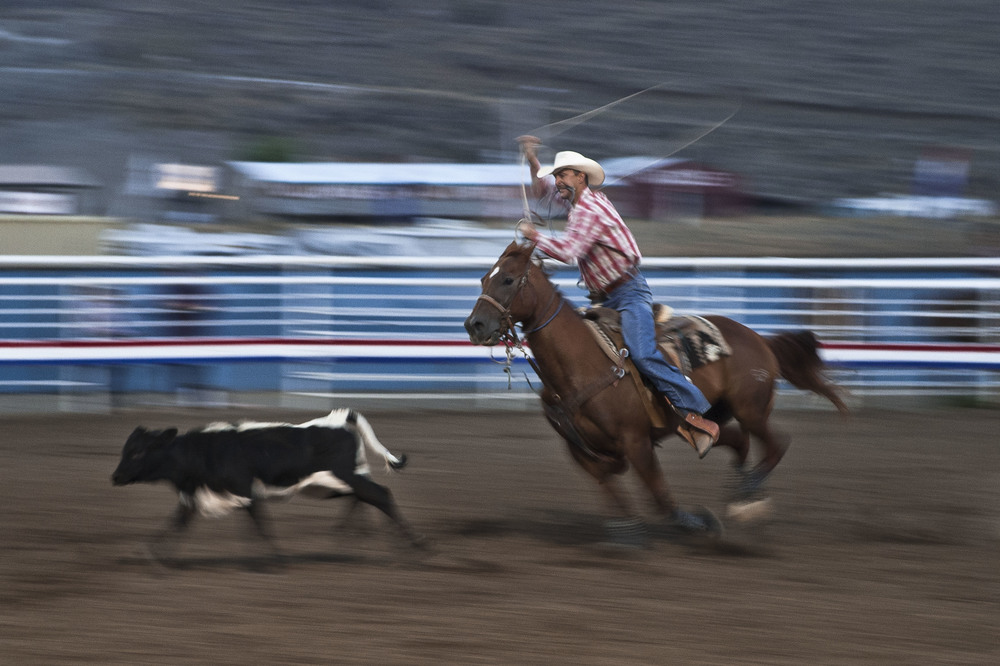 Breakaway Roping at the Cody Rodeo in Cody, Wyoming.