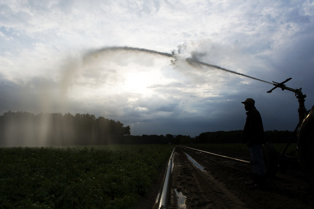 Peter, a migrant worker from Jamaica, tends to the irrigation tractor as the sun rises at Fairview Farms in Whately, Massachusetts. 2012