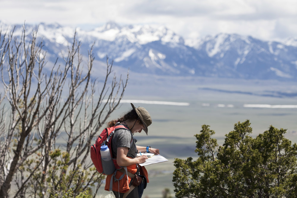 With the Madison mountains as a backdrop, Lindsey Beauregard '18 works on her metamorphic mapping project near Ruby Creek outside of Ennis, Montana.