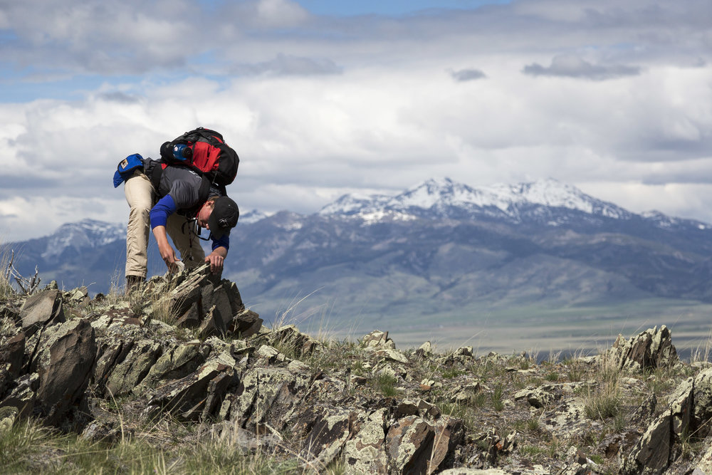 "Nick Barker '18 measures the location and angle of different rock formations in the Gravely Mountains, with the Madison Mountains behind him in Ennis, Montana. Barker was enrolled in the Short Term course offering ""Geology of the Northern Rockies and Columbia Plateau."""