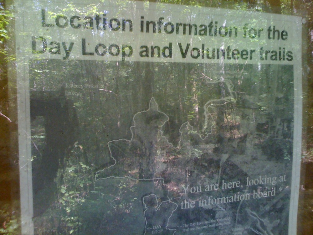Today's adventure: Volunteer Trail at Long Hunter State Park