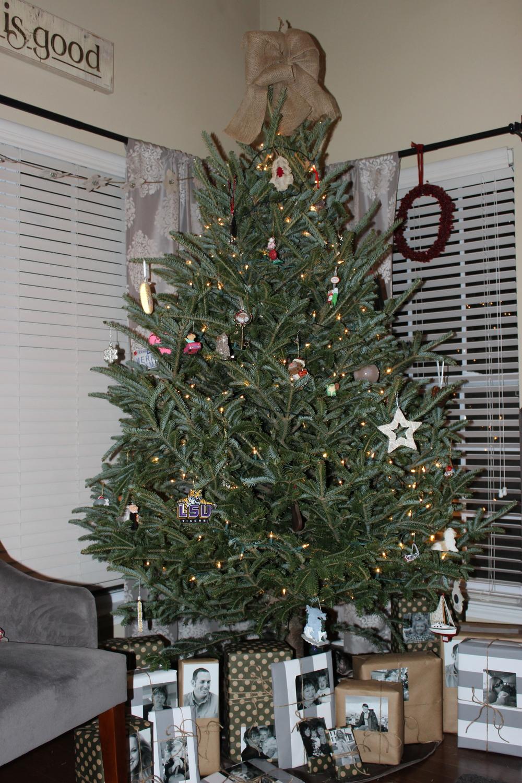2013_Christmas_Tree.JPG