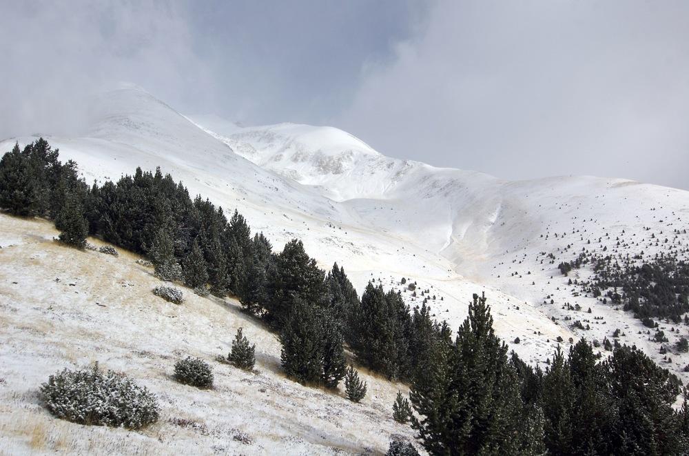 Bily pozdrav z Andorry.jpg