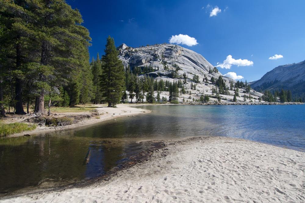 Trip to Yosemites