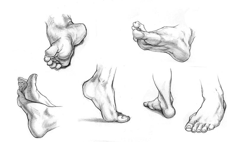 Web_Feet.jpg