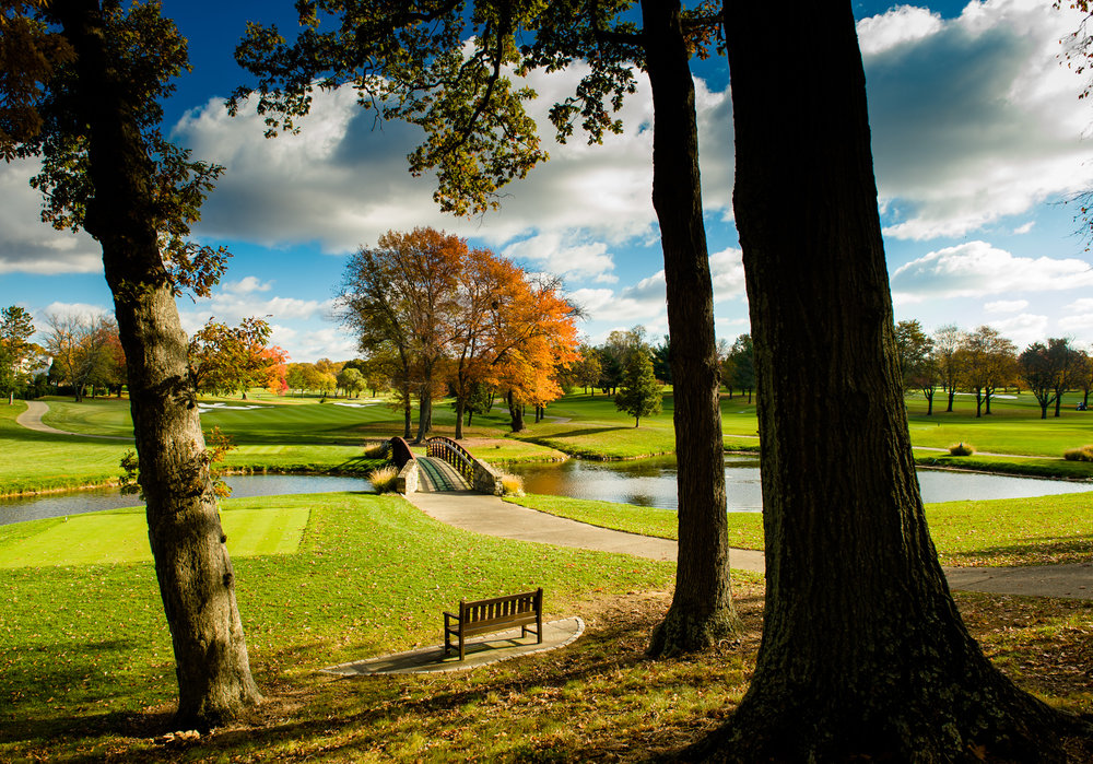 20161104 Westwood Fall Course PhotosCopyright 2016 Len  Spoden Photography.