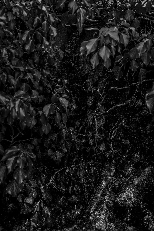 untitled-07112.jpg