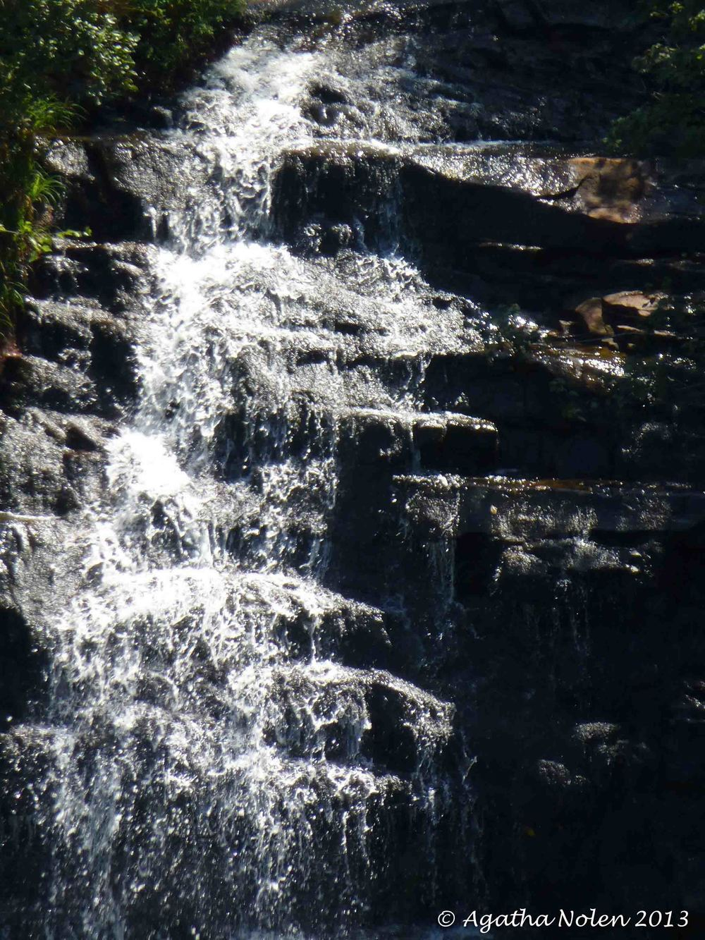 Falls Creek Falls State Park, 2013