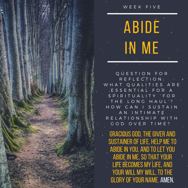 Week Five Abide In Me.png