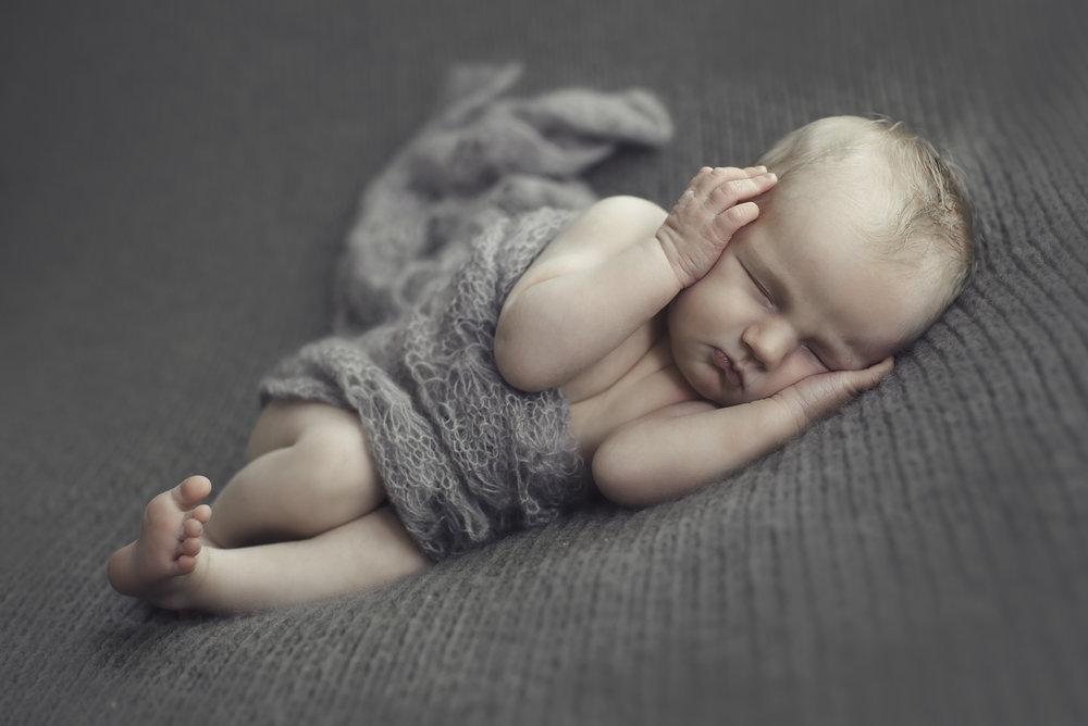 Long island ny newborn photographer ashbrooke photography grey jpg