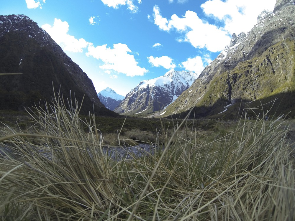 New Zealand 2013  125 2013-09-24.jpg