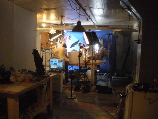 studio1q.jpg