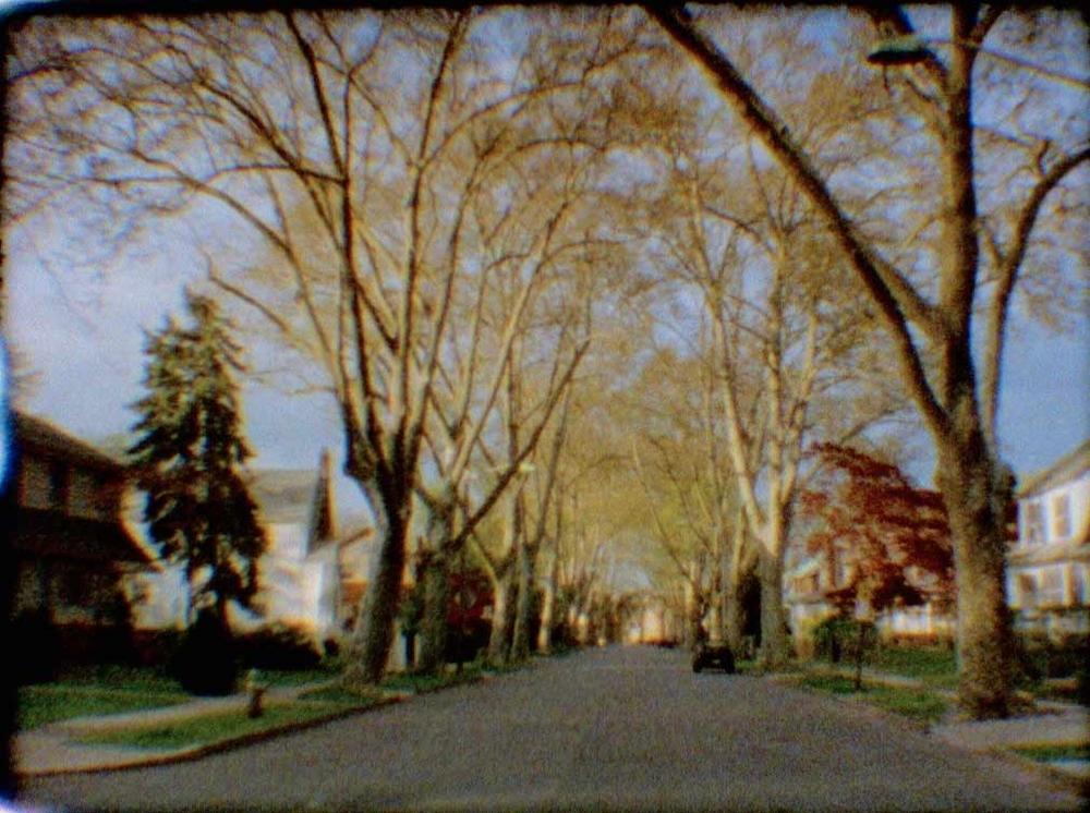 reggie-neighborhood.jpg