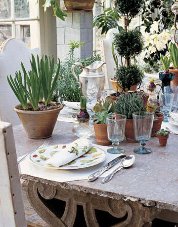 House Beautiful_table setting 7.jpgplantssplenderosa.jpg