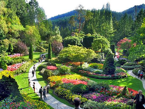 butchart_gardens2.jpggoogle.jpg