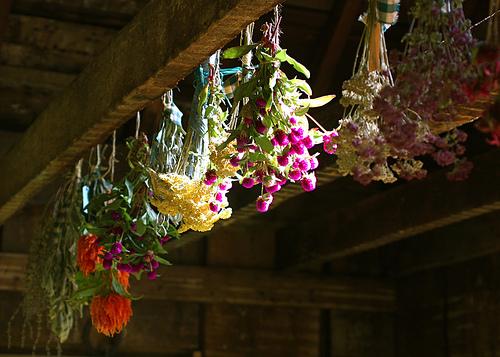 hang-dry-flowers.jpg