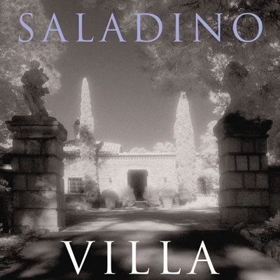 Books-Saladino-Decorating.jpg